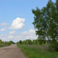 сельская дорога :: надежда