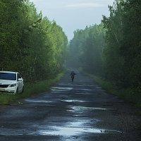 Путник :: Яков Реймер