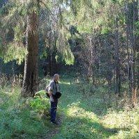в Прикамских лесах,у Серебряного родника :: Валерий Конев