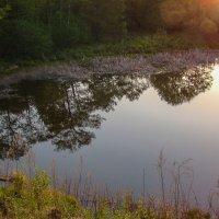 Вечернее отражение... :: Арина