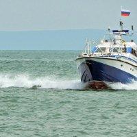 полиция приехала :: Алексей Меринов