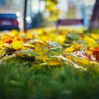 Осень в Симферополе :: Дмитрий Горр