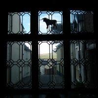 У средневекового окна :: Natalia Harries