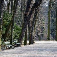 Парк Варшавы :: Dana