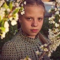 Алина... :: Светлана