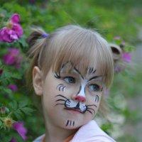 Нежный котёнок :: Виктория Доманская