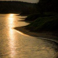 Закаты на Сухой протоке.  Береговая полоса :: Алексей (АСкет) Степанов
