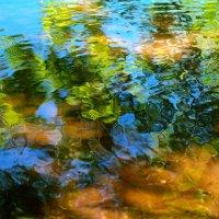Расплескало лето акварель.. :: Андрей Заломленков