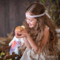 Пасхальные истории :: Yana Sergeenkova