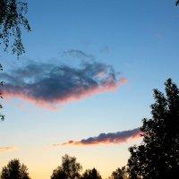 Бесконечное весеннее небо... :: Катя Бокова