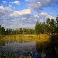 на озере... :: александр дмитриев