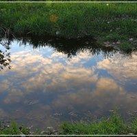 В лужу смотрятся облака :: Виктор Бондаренко