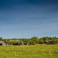 Мертвая деревня :: Анна Никонорова