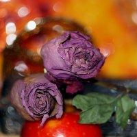 Засохшие розы. :: Олег Чернышев