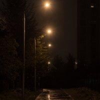 Ночь. Улица. Фонарь... :: Надежда Кунилова