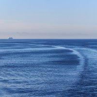 На морском просторе :: Евгений Никифоров
