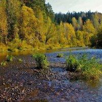 Осенний перекат :: Сергей Чиняев