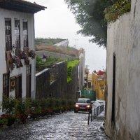 Мокрые улочки Icod de los Vinos :: Виктор М