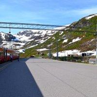 Летний пейзаж Норвегии :: Ольга
