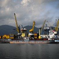 Порт Новороссийск :: Андрей Анабардыев