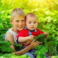 детки :: Светлана Светленькая