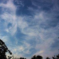 Облачное майское небо :: Татьяна Пальчикова