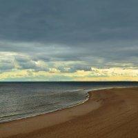 Балтийский берег :: Николай Танаев