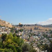 Иерусалим, вид с масляничной горы :: Яков Геллер