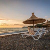 на пляже :: Алексей Яковлев