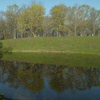 городской парк и пруд...начало мая... :: Михаил Жуковский