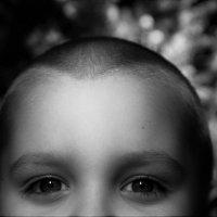 Взгляни в глаза мои светлые :: Анастасия Алёшина