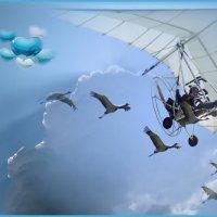 «Я смотрю на небо ...» :: vitalsi Зайцев