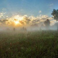 Рассветы июня :: sergej-smv