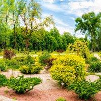 В ботаническом саду :: Юрий Шапошник