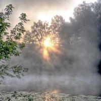 солнце.туман. :: юрий иванов