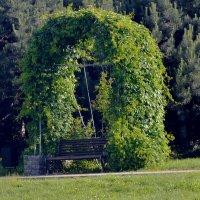 уютная скамейка для отдыха :: Ирина Божко