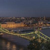 Мост Свободы в Будапеште :: Борис Гольдберг