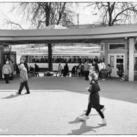 Городская суета... :: Allekos Rostov-on-Don