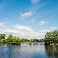 Летний день на озере 2 :: Виталий