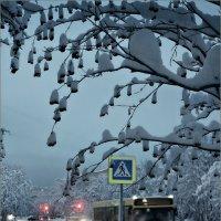 Пешеходы здесь не ходят... :: Кай-8 (Ярослав) Забелин