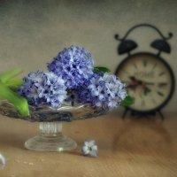 время весны... :: Natali-C C