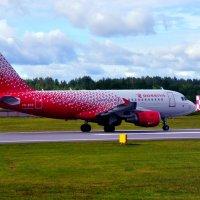 AIRBUS A319 :: vg154