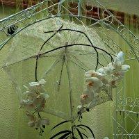 зонт и орхидеи :: Александр Корчемный
