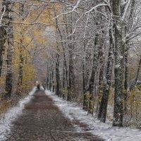 Первый снег.... :: leonid