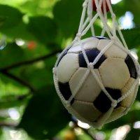 15-й чемпионат Европы по футболу стартовал! :: Валентина ツ ღ✿ღ