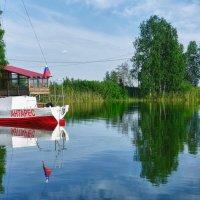 Летом на озере :: Светлана Игнатьева