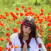 Молитва за Україну :: Olga Volkova