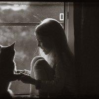 С кошкой на окошке 2 :: Наташа Морозова