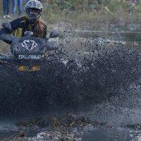 Амазонка :: MPS