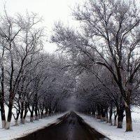 дорога в зиму :: валентин яблонский
